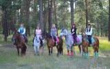 "Лошади конюшни ""Конный двор"""